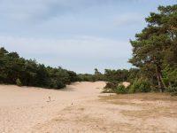 josettevanerp-fotografie-het-middelpunt-lunteren007